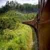 زیباترین جاذبه های گردشگری کندی در سریلانکا